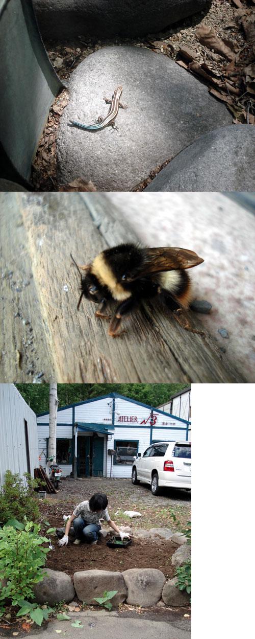 製作中に突然ハチやらカマドウマ!